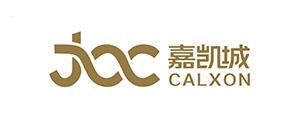 嘉凯城集团股份有限公司